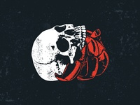 Hermit Skull