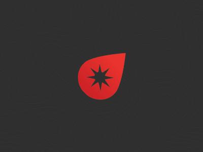 Compass logo compass