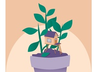 House Plant House