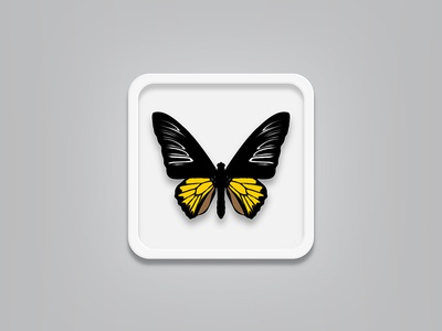 Butterfly rebound (free vector file) vector butterfly