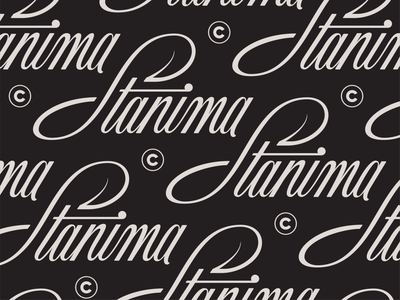 Stanima Hand Lettering V1 logo cursive script wordmark hand lettering