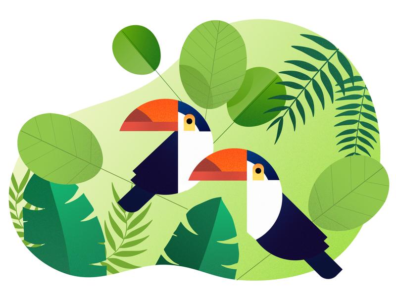 Toucan Birds toucans birds bird graphic design illustration art illustraion