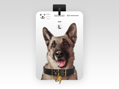 Collar Package small medium large package mockup package design charms packagedesign package collars pets