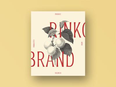 Rinko Display Typeface