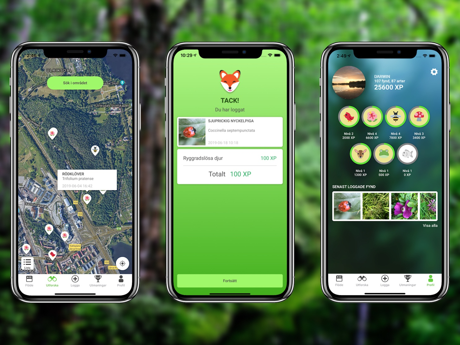 Biologg - Nature as a game game design app ux ui product designs