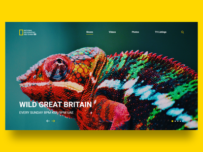 National Geographic Abu Dhabi nat geo ad national geographic abu dhabi national geographic redesign vector clear landing page web design ux ui