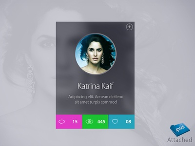 Celebrity Profile Widget