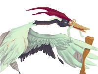 Wise Bird Final