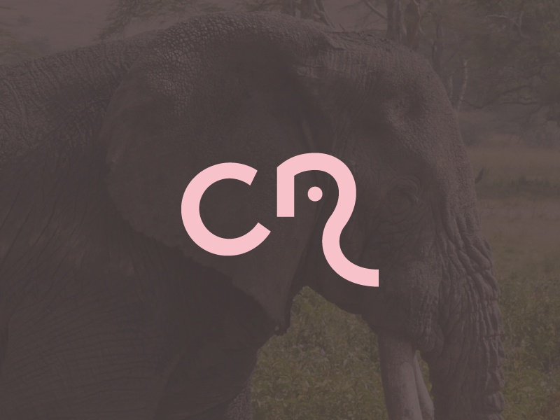 Elephant Ocre By Diego Olaya Dribbble