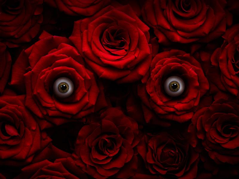 Sub Rosa digital art design graphic design art direction