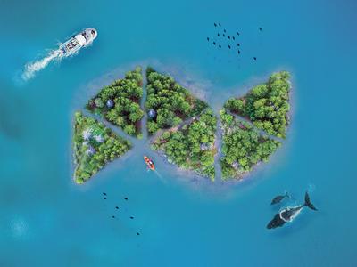Natife Island native nature island design illustration