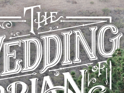 Wedding Website Lettering typography vector illustrator lettering photoshop save the date wedding