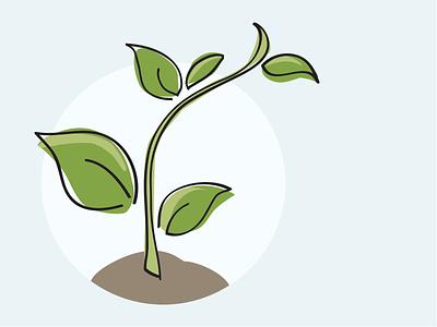 vector seedling greenery plant vector wacom illustrator seedling