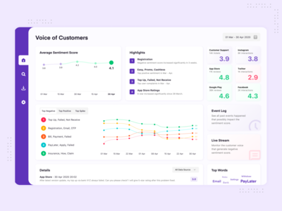 Voice of Customers Dashboard - Desktop App