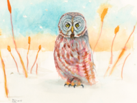 Great Grey Owl Watercolour