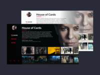 TV interface for XBMC