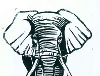 elephant / linogravure / illustration