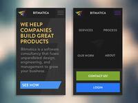 Mobile Menu and Homepage