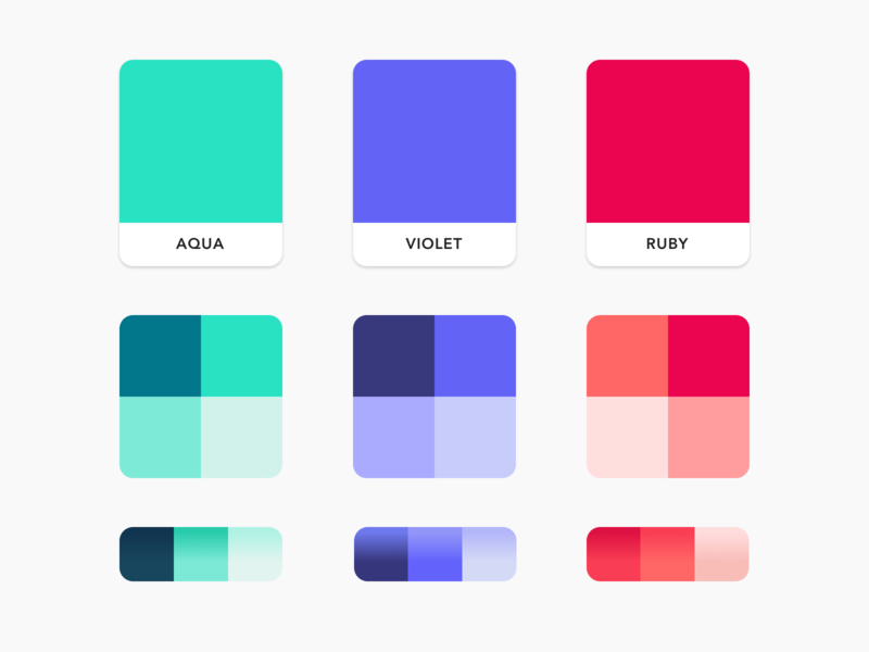 Brand Color Palette by Care Design Studios on Dribbble