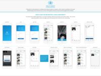 Philip Morris Mobile App User Flow