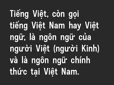 Untitled No. 1 - Vietnamese Diacritics vietnamese diacritics type sans serif type design