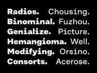 Grotesk Typeface Progress