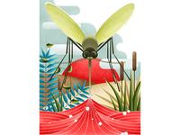 The Mosquito Season