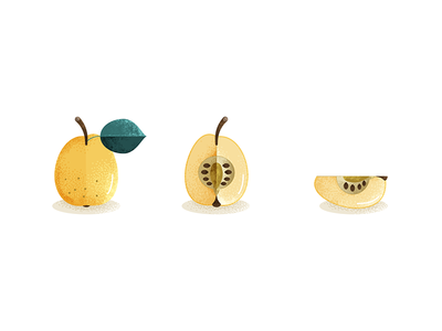 Quince fruits food illustration