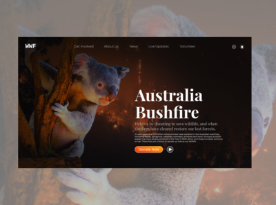 Australia Bushfire Donation UI
