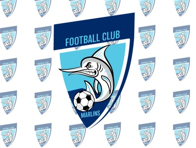 Football Club Recreation/Update