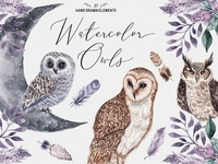 Watercolor Owls - Set