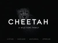 CHEETAH Sans Serif Font Family download hand made uppercase custom type custom font design all caps letters branding logo cheetah wild sans serif strong bold typeface type font family typography font