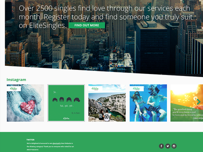 Web Project for Elite Singles web responsive web development web design