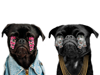 Pug Lingo texture gradient shading logo branding clothes chains character animal dog photography