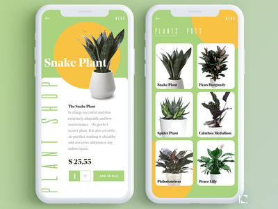 Plant shop shop orange green 2019 plant app plant app design appdesign app uiux clean typography creative minimal web ux ui design