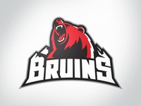Missoula Bruins NA3HL Primary Logo
