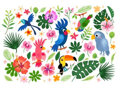 Tropical collection of parrots. Brazil jungle flora vector illustration jungle brazil flowers parrots exotic