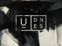 UDNES