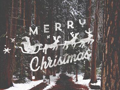 Merry Christmas! merry christmas