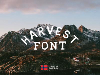Harvest sharp handmade font
