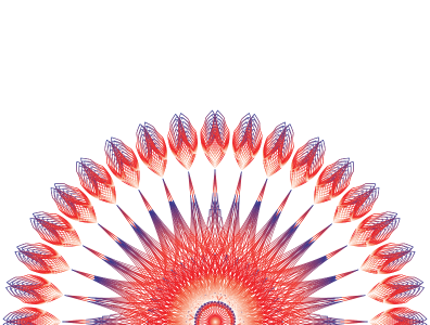 Exuberánce geometric pattern geometry vector design illustration digital