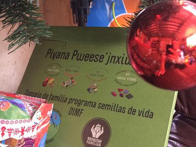 Piyana Pweese'jnxiwe'sx education game lottery spanish nasa nasa yuwe illustration digital