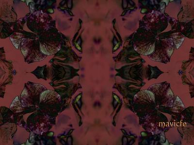 Hydrangea Pattern pattern photography texture textile tile decorative decoration digitalart graphicdesign graphic art nature kaleidoscope flower hydrangea floral pattern background floral illustration mavicfe photoshop