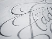 Fontanel (sketch)