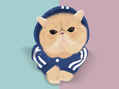 Dennis the Cat stippling hoodie teal pink illustration cat