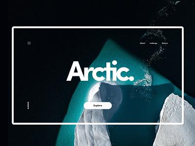 Arctic. minimalism design ux ui