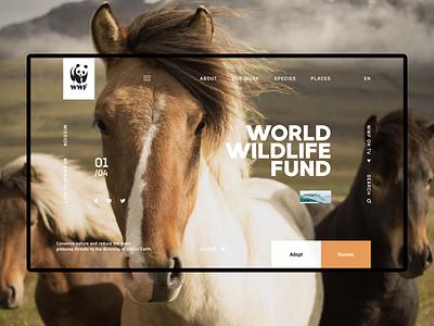 WWF wwf concept ux design ui
