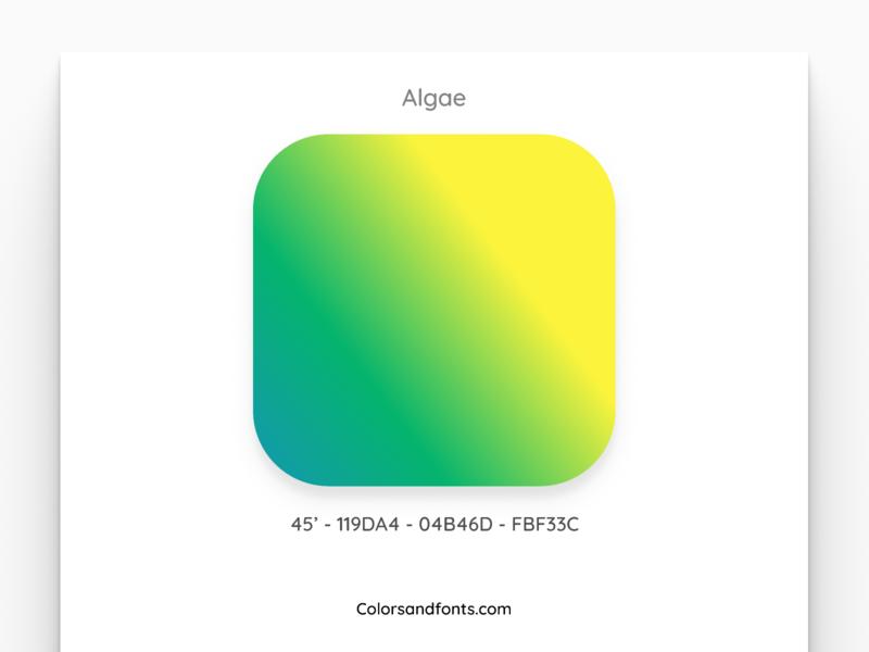 Colors & Fonts - Algae by Michael Andreuzza on Dribbble