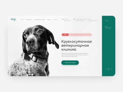 Web interface for veterinary clinic figma design minimal pets pet care animals veterinary clinic ui design veterinary veterinarian pet web design clinic ui ux web landing page