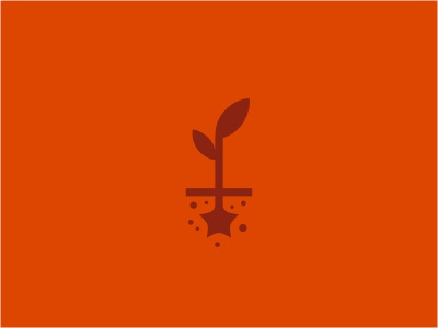 Star&Seed logo plant seed tree dirt star space energy network orange brown growth